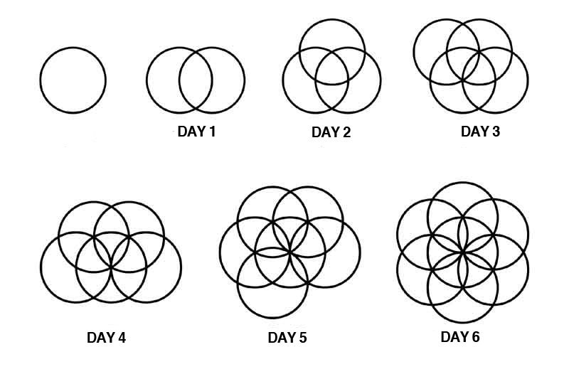 Sacred Geometry and Sexuality - Illia Heart